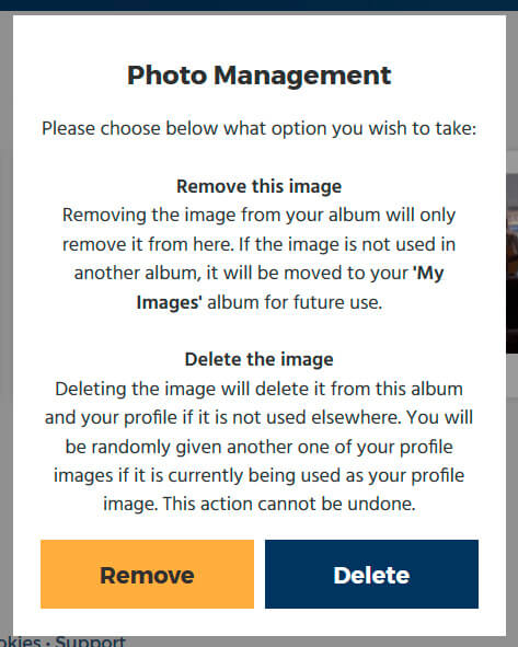 Delete dialog on a photo